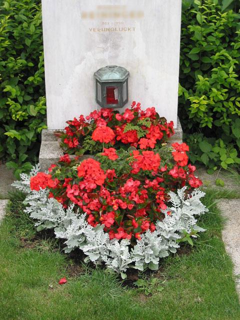 Blumen rott 1230 wien erlaaerstrasse 64 43 1 865 86 97 for Gartengestaltung 1230 wien